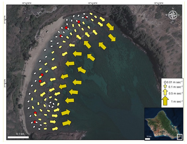 Map of current flow at Hanauma Bay Nature Preserve.