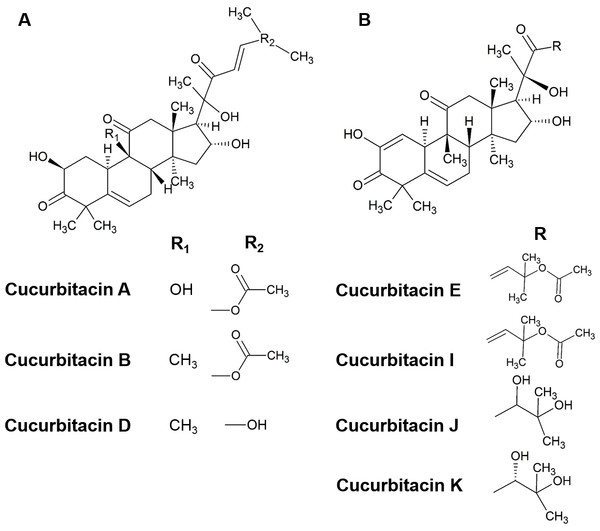 The structure of cucurbitacins.