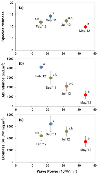Variation in the mean number of species per site (A), mean abundance (B) and mean biomass (C) of macrobenthic assemblages at four sampling events associated with significant variation in wave energy preceding each event.