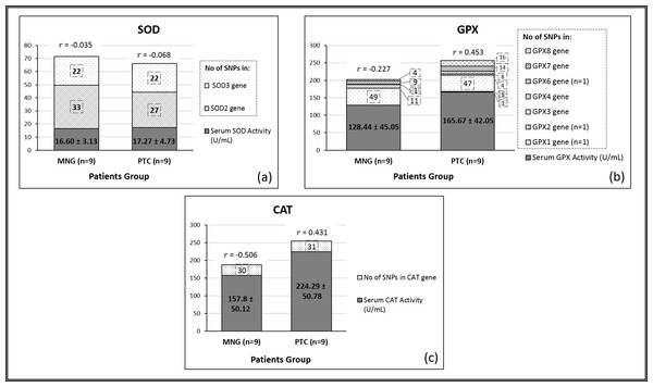 Associations between antioxidant enzyme activities and the total number of SNPs present in MNG and PTC groups.