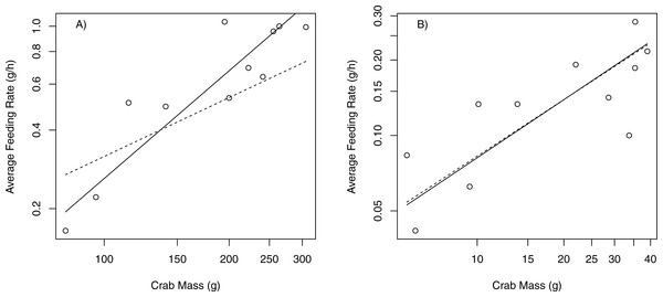 Scaling relationships between feeding rates (g/h) and crab mass (g).