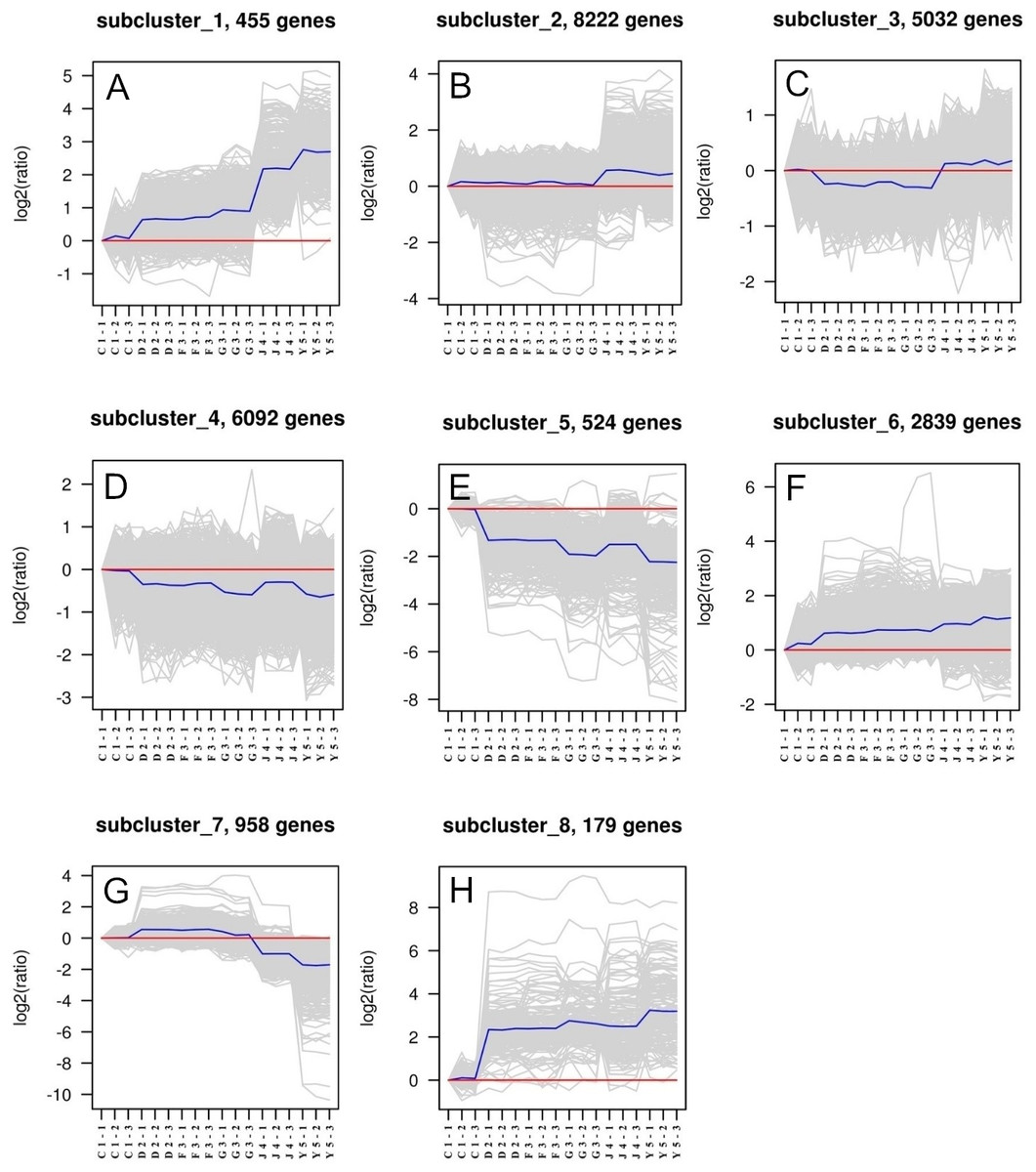 Selection of housekeeping genes as internal controls for