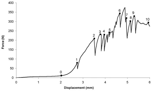 Load–displacement curve.