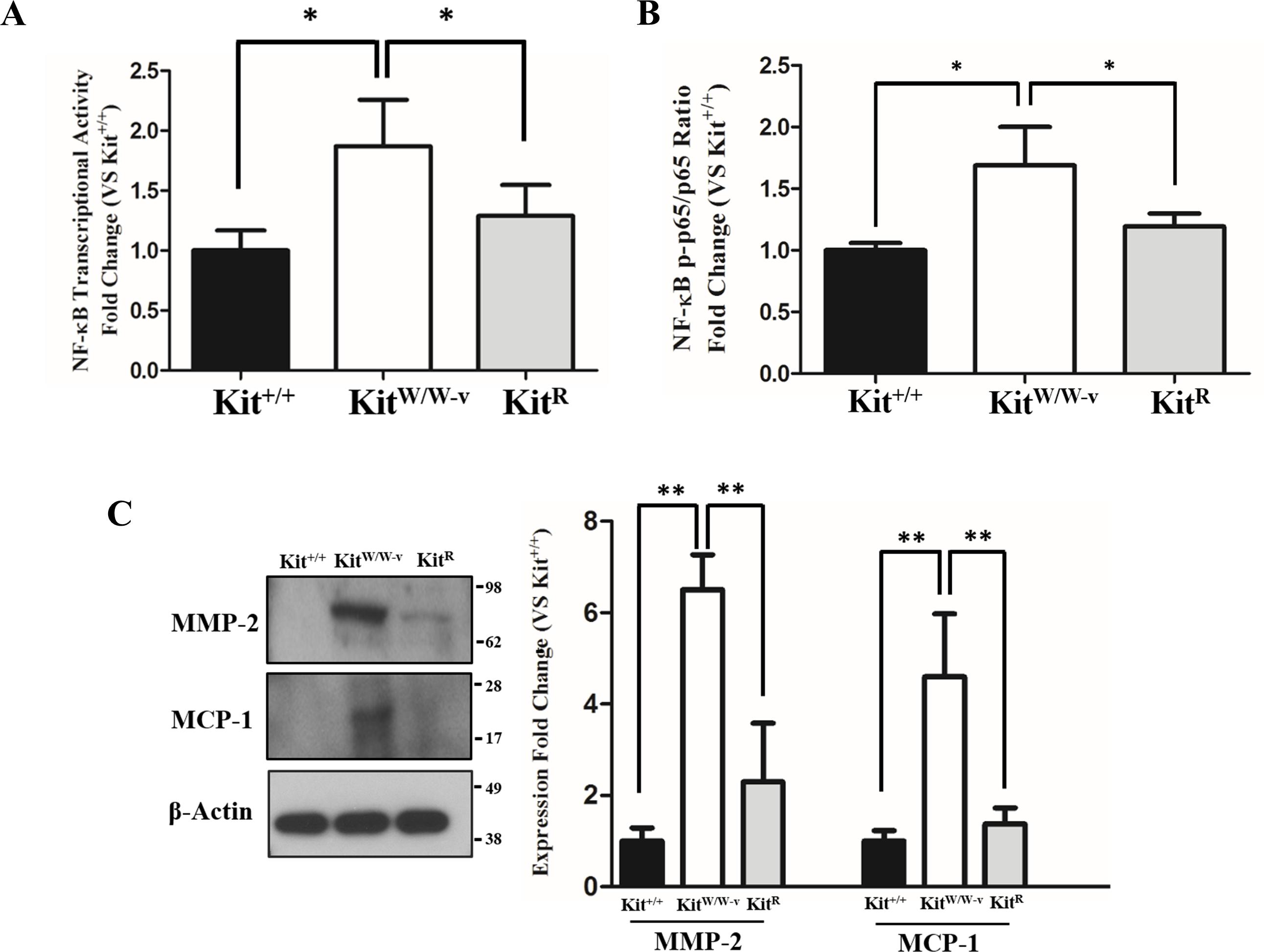 C Kit Modifies The Inflammatory Status Of Smooth Muscle Cells Peerj Figure 2 Passive Envelope Detector Circuit Doi 107717 Peerj3418 Fig