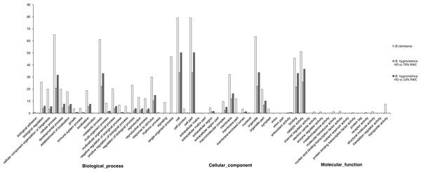 Gene ontology classification of unigenes between B. hygrometrica and B. clarkeana.
