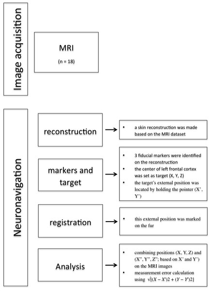 Overview methodology of the study.