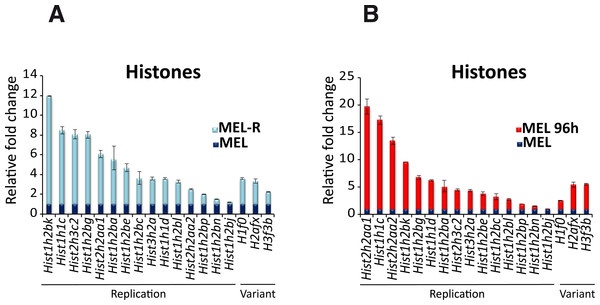 Differential histone gene expression between progenitor and resistant cell lines and after differentiation.