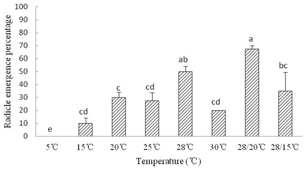 Figure of radicle emergence of Y. longistaminea at different temperatures.