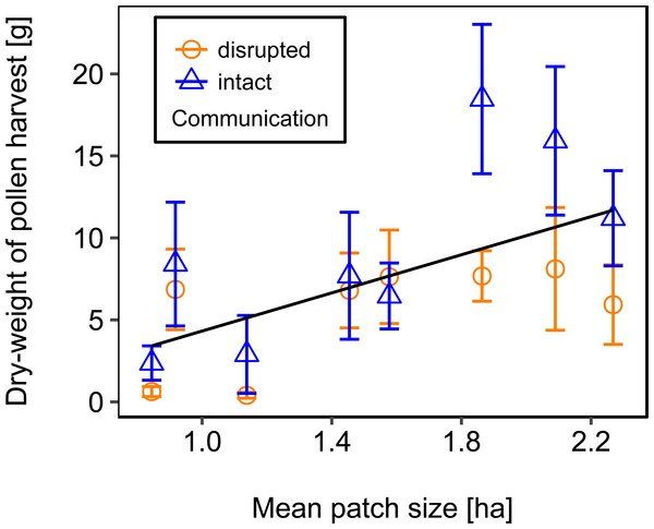 The effect of mean patch size within landscapes on mean dry-weight (±se) of pollen collected by honey bee colonies.