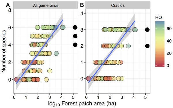 Relationship between forest patch area and gamebird species richness within 129 forest patches and 15 continuous forest sites.