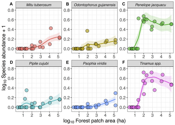 Relationship between forest patch area and gamebird species abundance within 21 forest patches and two continuous sites.