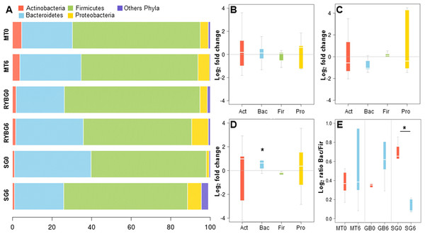 Relative abundance of major bacterial phyla in the gut microbiota of the three groups of the study, before and after each treatment.