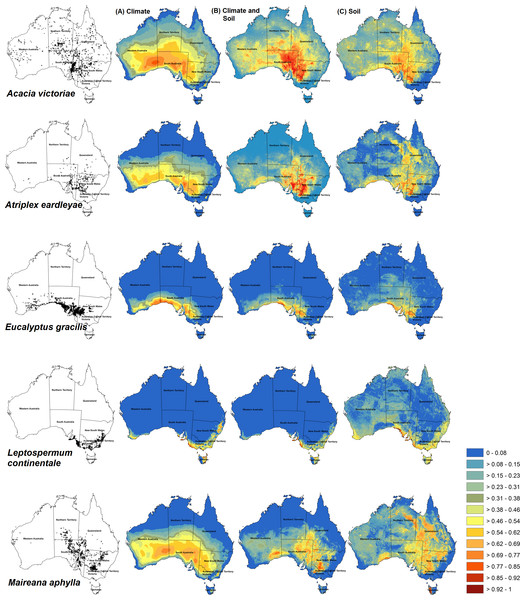 Habitat prediction maps of some species used in different models.