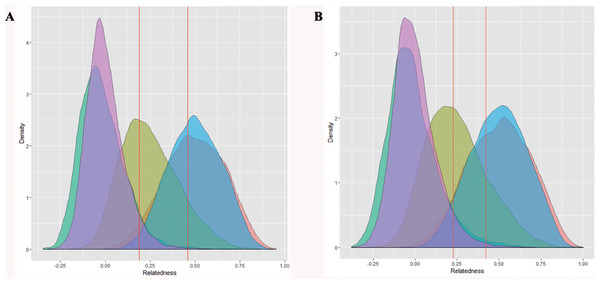 Observed distributions of relatedness (pink) for the (A) A1A2 dataset and (B) B1B2B4 dataset, plotted against expected distributions for 10,000 simulated pairs for each of the following relationship categories: nonrelated (green); half-siblings (yellow); full-siblings (red); parent–offspring (blue).