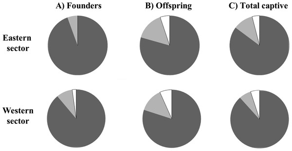 Proportion of individuals classified as unrelated (dark grey), first order relatives (full siblings and parent–offspring, white), and half-siblings (light grey) for each of the two Calotriton arnoldi breeding line (founders, offspring, total captive).