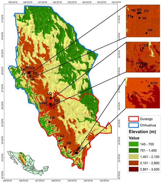 Locations of the studied populations: La Tinaja (TN), El Ranchito (RC), El Cuervo (CV), Talayote (TY), Las Trojas (TR), El Venado (VN), La Quebrada (LQ), Paraje Piedra Rayada (PPR), Quebrada de los Duran (QD), Cebollitas (CB), San José de las Causas (SJ), Santa Bárbara (SB), Arroyo del Chino (ACH), La Pista (LP).