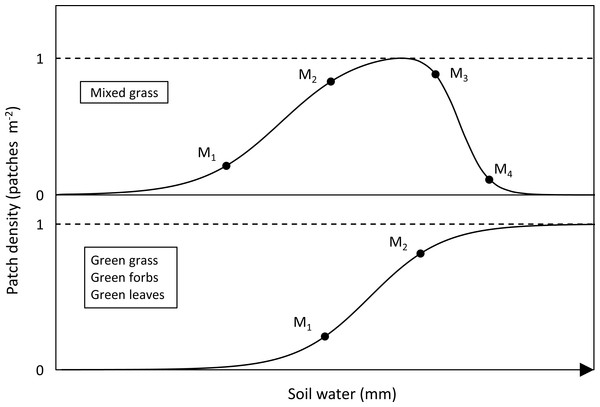 Sigmoidal curves representing the relationship between availability and soil water for the forage types.
