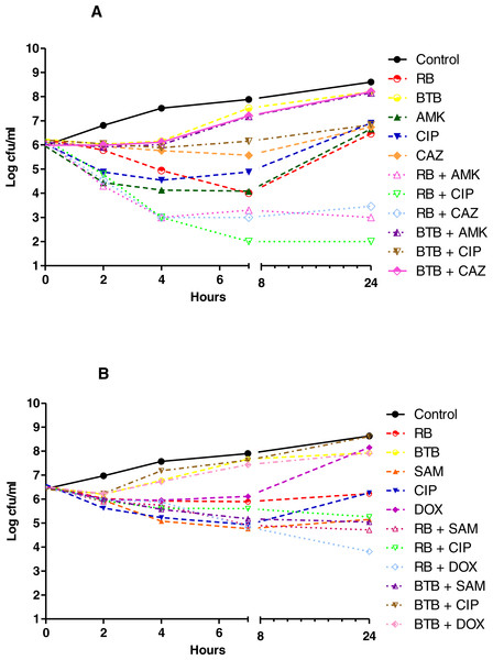 Time kill curves of herbal tea and antibiotic combinations against P. aeruginosa and A. baumannii.