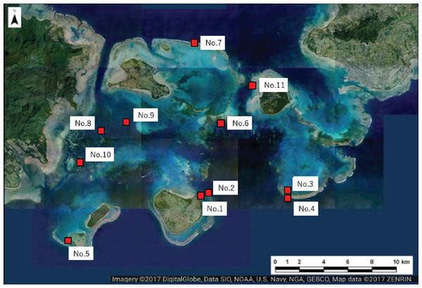 Location of the study sites within Sekisei Lagoon, Okinawa, Japan.
