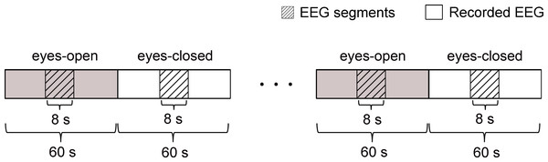 Schematic of the recorded EEG data 4 times of alternating periods of 60 s eyes open followed by 60 s eyes closed.