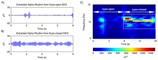 Results of the alpha rhythm extraction in (A) eyes-open state and (B) eyes-closed state, respectively. (C) The spectrogram of the alpha rhythm.