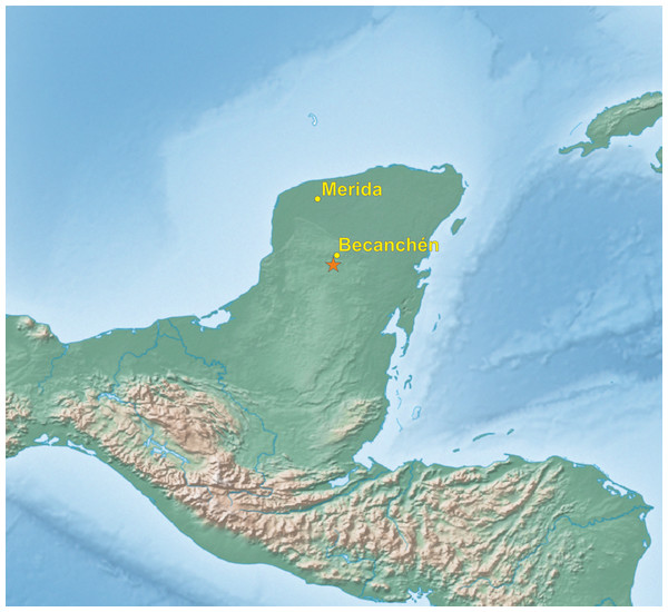 Map of Yucatán Peninsula with the location of site (asterisk), where the new Amazona was found.