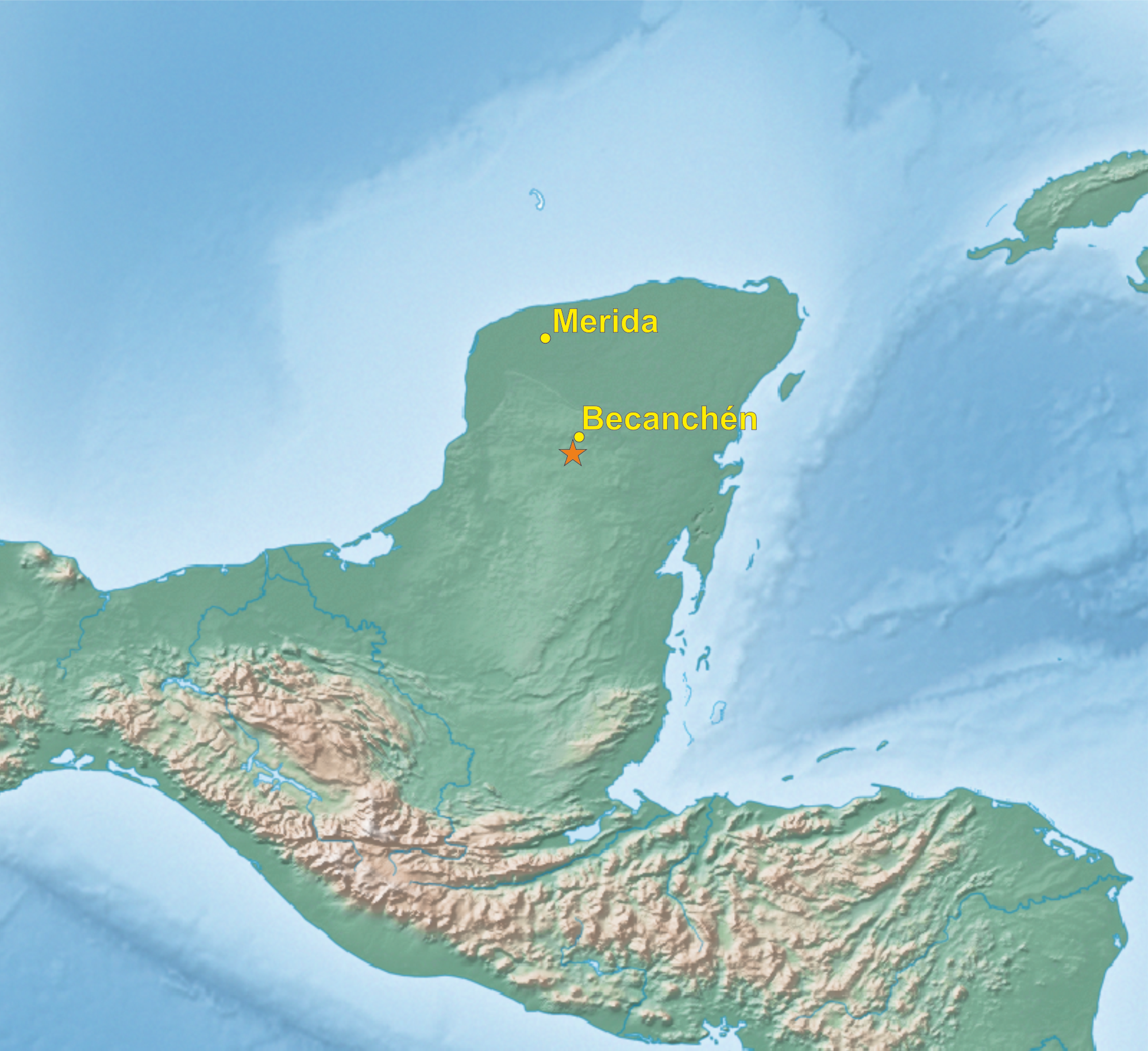 A new parrot taxon from the Yucatn Peninsula Mexicoits position