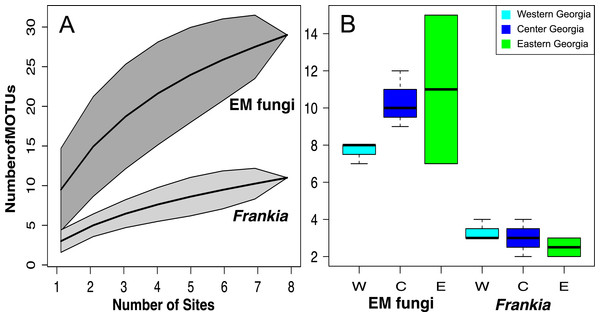 MOTU accumulation curves computed for all Georgian site for Frankia and EM fungi (A) and species richness per site in West, Central and East Georgia for Frankia and EM fungi (B).