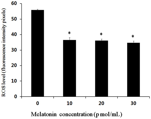 Effects of melatonin on ROS levels in bovine cultured parthenogenetic embryos.