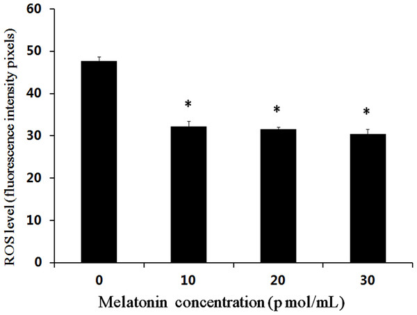 Effects of melatonin on ROS levels in bovine cultured androgenetic embryos.