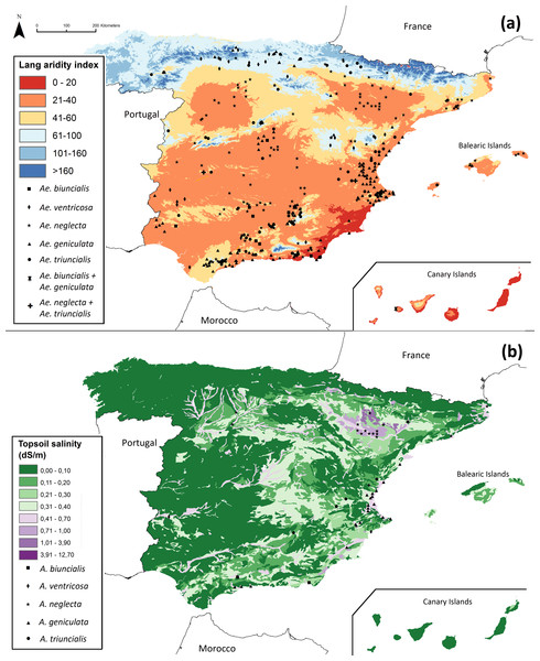 Location of (A) priority ecogeographical gaps (PEG) of Aegilops in Spain that occur in sites where AIL < 40, and (B) PEG that occur in sites where the highest salinity values are also found.