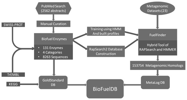 Flowchart of the strategy used for constructing BioFuelDB.