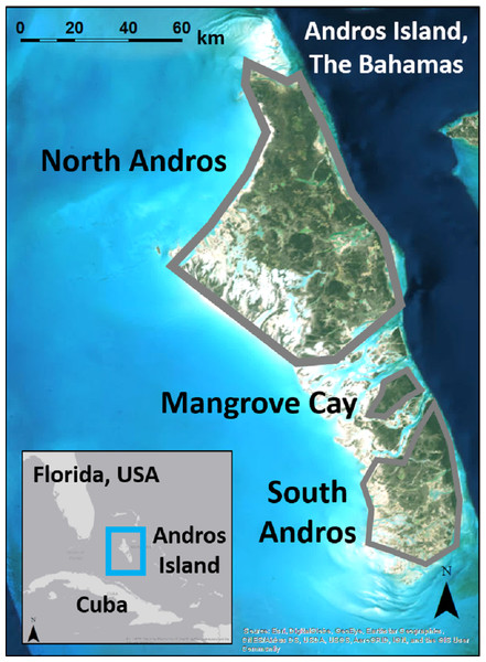 Andros Island is divided into three large, inhabited cays (North Andros, Mangrove Cay, South Andros), and many smaller, uninhabited cays, by channels up to 5 km across.