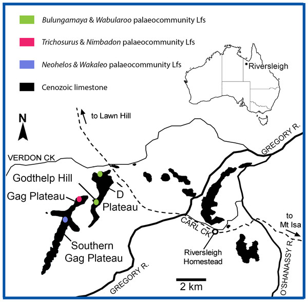 Location of the Riversleigh World Heritage Area, Queensland, Australia and local faunas representing proposed palaeocommunities (after Arena, 2004; Black, 2016).
