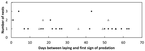 Plot of the frequency of nest predation events against the time since nest construction and first goanna predation event for loggerhead nests laid.