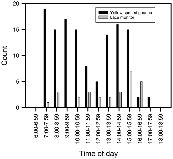 Plot of the number of images of goannas against time of day.