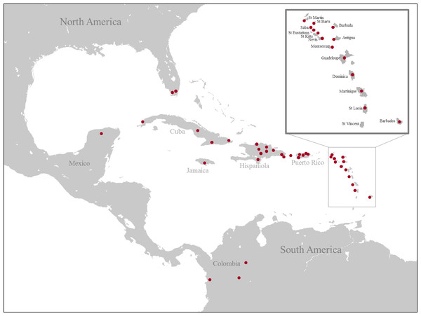 Map of collecting localities of all specimens used for the molecular analysis.