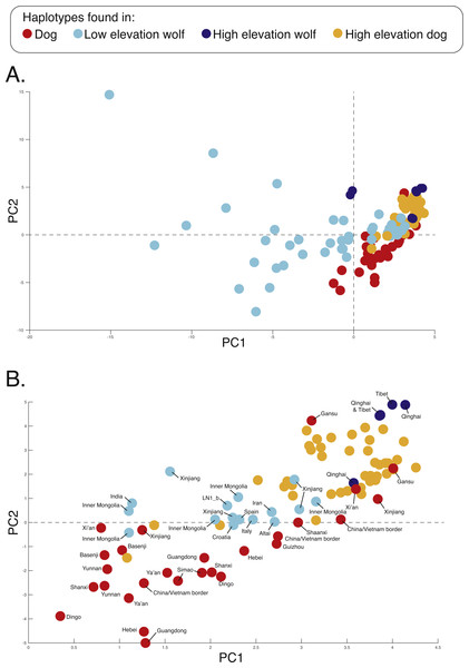 PCA of phased haplotypes for the putatively introgressed region containing the PRKCE and EPAS1 genes for the (A) whole sample set and (B) those samples with PC1 > 0.