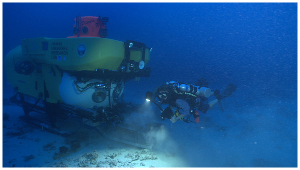 Picture is taken at ∼90 m depth and shows a rebreather diver with the submersible Pisces V working together collecting corals and macroalgae in the 'Au'au Channel (Image credit: Robert K. Whitton).