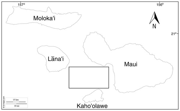 Map showing the location of sampling sites, box represents the approximate location all samples were collected from within the 'Au'au Channel.