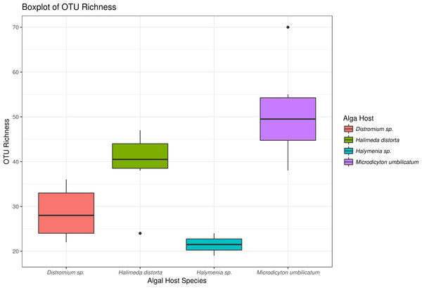 Boxplot showing richness of OTUs from each algal host.