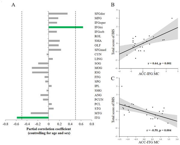 Behavior-morphological connectivity (MC) correlations.