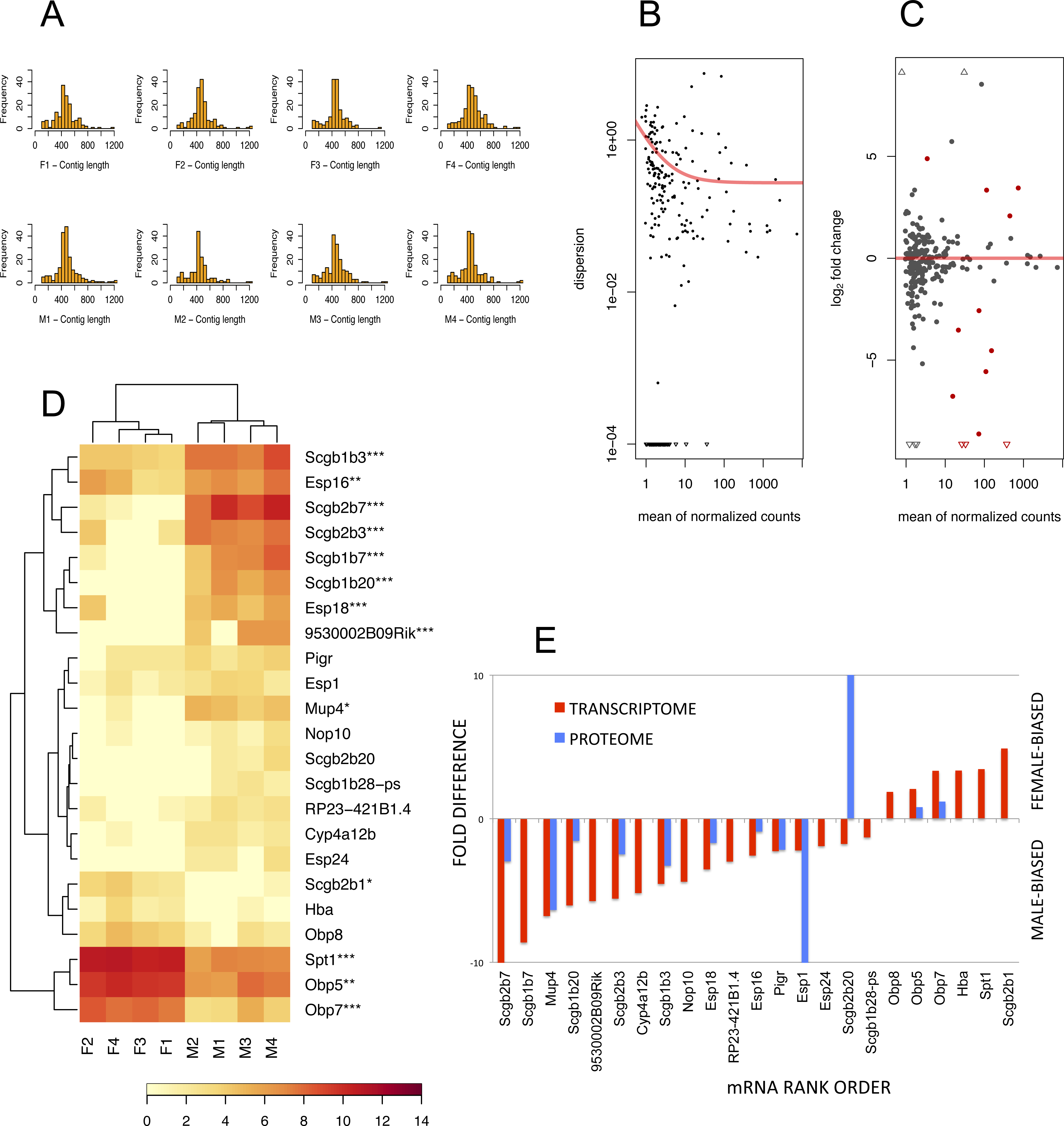 Abp 656 on the tear proteome of the house mouse (mus musculus