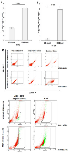 Cancer stem cells surface markers and ALDH activity of MDA-MB-231 spheroids assessed by flow cytometry analysis.