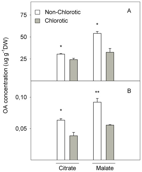 Organic acids (OA, citrate and malate) concentrations (in μg g−1 DW) determined in (A) the total tissue and (B) apoplast fraction of the non-chlorotic and chlorotic fully expanded leaves of 'Navelina' orange trees.