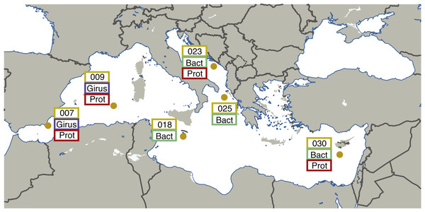 Map illustrating the locations and size fractions sampled for the Tara Oceans Mediterranean Sea datasets.