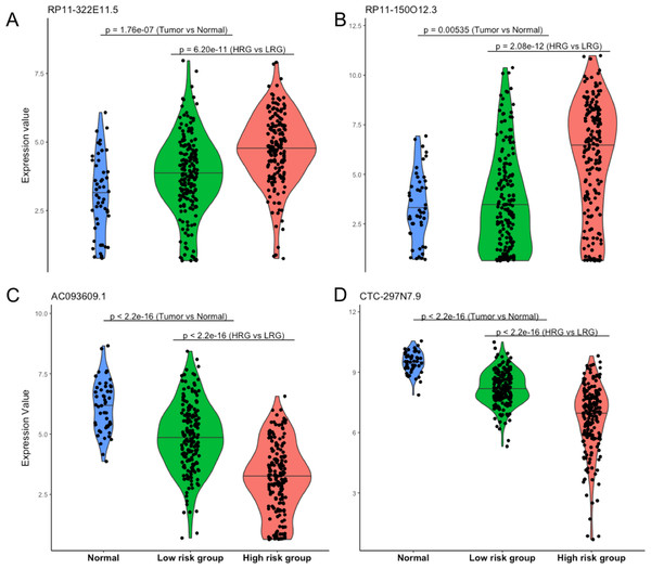 Expression patterns of four prognostic lncRNAs.