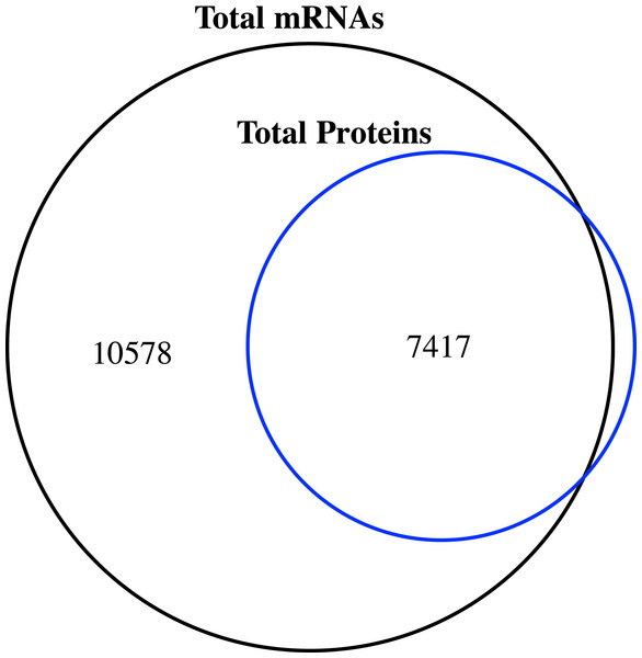 Venn diagram of the number of expressed genes with RPKM ≥1 and the identified proteins in the proteome of jujube flowers.