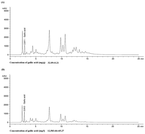 Chromatogram of gallic acid in both Qi extract (A) and QiF10 (B).