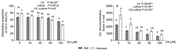 The distribution proportion of Cd (A) and Cd bioconcentration factors (B) in roots under Cd stress.